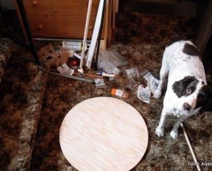 Jax helps out with our test stand construction.